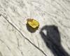 Tu, io (Lumase) Tags: leaf autumn marble action symbol yellow shadow arm man