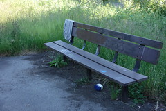 DSC02371 (David Housewright) Tags: rx100 everett vaseline towell bench