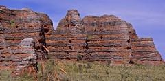 cyanobacteria crusts (outback traveller) Tags: geology kimberley