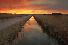 We will walk in the sun (Bernhard Sitzwohl) Tags: sunset red nature landscape outdoor lake lakeneusiedl neusiedlersee rust reed waterreed open sky glow dslr eos canon lee filtration water channel