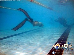 """02 febbraio 2017 - Prove sub & Freediving... • <a style=""""font-size:0.8em;"""" href=""""http://www.flickr.com/photos/138167729@N03/32629558882/"""" target=""""_blank"""">View on Flickr</a>"""