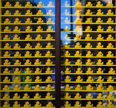 ~duck emoji~ (photobza) Tags: patterns boston ma city rubberducks ducks color