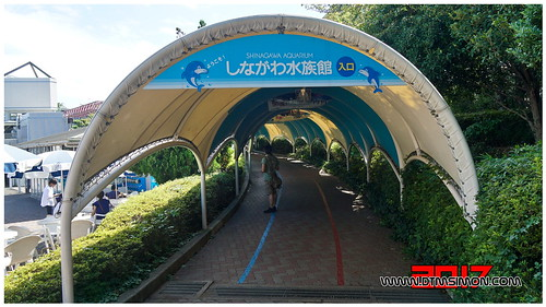 品川水族館21.jpg