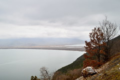 Lake view by ioanna papanikolaou CSC_2647 (joanna papanikolaou) Tags: lake landscape lakescenery lakes prespes greece macedonia view horizon scape scenery winter trees