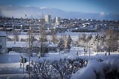 Winter Wonderland (unnurol) Tags: snow winterwonderland winter sky white blue outdoor