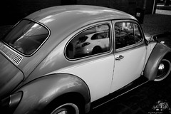 L1005035.....aspirations..... (ogrhodeo) Tags: beete volkswagen porsche cayene aspirations want grow dream goal goals black white blackandwhite bw fixedfocal lfi
