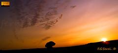 nuv2-copia (fgseral) Tags: paisajes olympus desierto cielos atardeceres monegros losmonegros fgseral desiertodelosmonegros paisajesdelosmonegros fernandogonzaleseral