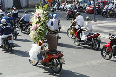 HO CHI MINH 32596 (photostudio63 photographe clermont ferrand) Tags: travel horizontal cycle asie circuit vlo voyages vitnam 2015 mobylette enville 2roues asiedusudest moyendetransport pninsuleindochinoise photostudio63 photographeclermont63fr photostudio63fr photographeclermont63com photostudiocom thierrytavars