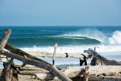 Landes (Matt Loussouarn | Photography) Tags: ocean mer seascape soleil offshore t vague plage perfection bois