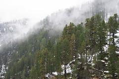 Nationalpark Hohe Tauern in der Umgebung der Rudolfshtte am Weisee-bw_20150925_2534.jpg (Barbara Walzer) Tags: uttendorf nationalparkhohetauern weissee gletscherwelt berghotelrudolfshtte weisseegletscherwelt alpinzentrumrudolfshtte