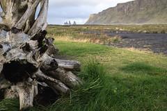 A Pic from Vik (Paul C Stokes) Tags: sea zeiss iceland sony south vik southern carl fe za f4 basalt stacks oss reynisdrangar 1635mm reynisfjall reynisdrangur a7r ilce7r