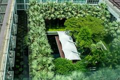 Pullman Hotel view
