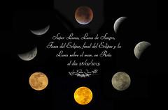 Super Luna, Luna de Sangre, Fases del Eclipse y la Luna sobre el mar del 28-09-2015... (Lola Cortés Neva) Tags: moon del eclipse y ngc luna roja fondonegro lunadesangre superluna lasuperluna lolacortésneva 28092015 fasesdeleclipseylalunasobreelmardel28092015 unacomposicióndecatalina