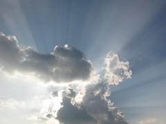 Radiance and Reflection #112 (tt64jp) Tags: 自然 日本 群馬 japan gunma nature light ray 光 陽光 sun sky cloud 空 雲 太陽 光輝 輝き 桐生 kiryu solar soleil sol radiant radiance bright brightness brilliant brilliance shine shining japon 일본