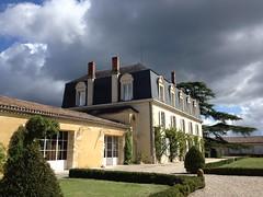 Vendanges 2015 (c) Château Guiraud