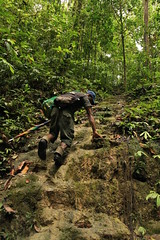 blake_everson_01_rainforest_trekking_near_mt._bosavi