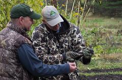 Bird Rescue (GSankary) Tags: fall farm farms ruralscenes farmscenes