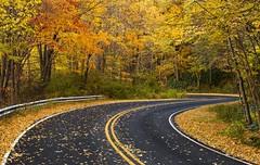 US 215 - Blue Ridge Mountains, North Carolina (pvarney3) Tags: road travel autumn fall leaves landscape northcarolina roads curve blueridgemountains blueridgeparkway roadway traveled appalachians curveinroad us215