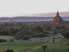 """Bagan: un troupeau de vaches pour le coucher de soleil depuis la pagode Pyathada Paya <a style=""""margin-left:10px; font-size:0.8em;"""" href=""""http://www.flickr.com/photos/127723101@N04/23348849362/"""" target=""""_blank"""">@flickr</a>"""