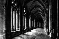 Kloostergang Domtoren Utrecht (Dirk van der Veen) Tags: dom domtoren klooster kloostergang utrecht cathedral cloister