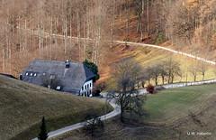 DSCN0871 (derudo) Tags: südschwarzwald stohren münstertal vogesenblick blickindierheinebene