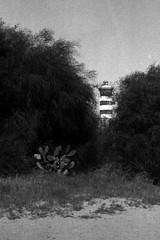 al Faro (n i n a y) Tags: olympus om2n trix rodinal 125 7 faro messina stretto mare maredinverno