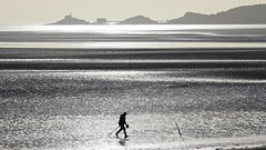 Digging bait, Swansea Bay (loftjim1) Tags: mumbles swanseabay beach bait digging monochrome silhouette fisherman coast lowtide goldcollection