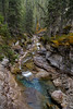 The Gorge X [Explored] (Blue Trail Photography) Tags: maligne canyon jasper national park alberta canada wild wilderness outdoor nature rockies rocky mountain stone water river forest tree sky