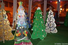 Natal 2016 em Faro, Portugal // 2016 Christmas in Faro, Portugal (Valter Jacinto | Portugal) Tags: europe portugal algarve faro natal christmas árvoredenatal christmastree luzes ligths christmaslights nightshots geo:region=europe geo:country=portugal geo:city=faro nex nex6 sonynex6 sel24f18z 24f18z sonnarte1824 e24mmf18za zeiss carlzeiss sonnar2418za