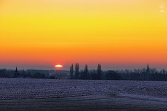 Soleil d'hiver - Winter sun - 19/01/2017 - Berloz (Be) (Geoffrey Maillard) Tags: soleil paysage lever jour début commencement dégradé hiver neige plaine horizon sunrise light begenning first ray sun cold freezing freeze morning landscape snow plain plains belgium belgique belgie belgien sonne sonnenaufgang winter premier rayon astre étoile atmosphère atmosphere kalt landschaft solaire shadow ombre et lumière start sunrising rise warm contrast kontrast contraste fields village église clocher ville champs city town stadt sky