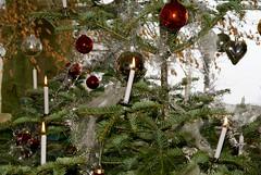 Merry Christmas // Joyeux Noël (Riex) Tags: sapin pine tree tannenbaum bougies candles boule decoration ball xmas christmas noel a100 amount minoltaamount sal1680z carlzeisssonyf35451680mm variosonnartdt35451680