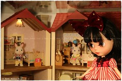 The Sylvanian Families Collection of the Girls 2of3