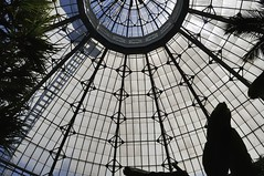 Whitewashed (edk7) Tags: nikond300 edk7 2009 canada ontario toronto allangardens park 1860 conservatory greenhouse palmhouse robertmccallum 1910 dome glass lattice frame ladder tree finial architecture building oldstructure engineering city cityscape urban whitewashed pattern