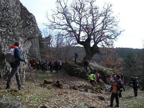 Senderismo Quintanar De La Sierra Y Regumiel Burgos - Fotografía Javi Cille (13)