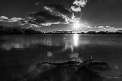 II parte (AvideCai) Tags: avidecai bn blancoynegro paisaje laguna atardecer agua sigma1020