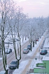 frosty morning... (green_lover) Tags: winter snow frost street trees morning żyrardów poland hometown cars seasons fromabove ourdailychallenge