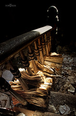 Sunlit Staircase (f.o.s.) Tags: abandoned sunlit sunlight shadow decay staircase stairs newspapers yellow golden stained papers paper house urbanexploration urbex rural farmhouse home light