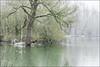 Kasteel van Horst and surroundings (joke devliegher) Tags: kasteelvanhorst horst nature natuur natuurfotografie naturephotography waterburcht moatedcastle belgium belgianblogger vlaamsbrabant flemishbrabant flanders