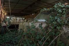 DSC_2570 (Foto-Runner) Tags: urbex lost decay abandonné car voitures ancêtres