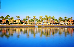 The sea.. (Ameera Mostafa) Tags: blue trees sea color colour reflection tree green beach water colors wow reflections palms happy photography amazing sand nikon colorful moments colours view bright awesome egypt blues palm resort reflect palmtree greens colourful moment capture fascinating d5100 nikond5100