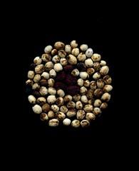 56890.01 Actaea pachypoda, Actaea rubra (horticultural art) Tags: circle mandala seeds actaearubra actaea dollseyes actaeapachypoda horticulturalart