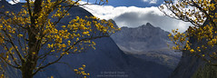 Autumn at the Eng N°7 (Bernhard_Thum) Tags: nationalgeographic thum elitephotography landscapesdreams alemdagqualityonlyclub capturenature bernhardthum hc4210