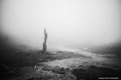 (Giorgos-S) Tags: blackandwhite mist landscape fuji athens greece parnitha x100 acharnai
