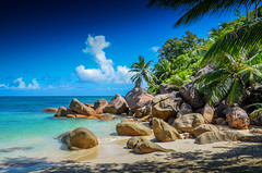 DSC_2515 2 (NICOLAS POUSSIN PHOTOGRAPHIE) Tags: soleil eau sable bleu coco fin vague plage rocher palmier bois seychelle turquoide