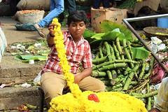 On the job (bluelotus92) Tags: flowers india flower child market flowervendor karnataka mysore chrysanthemum flowerseller yellowchrysanthemum mysuru devarajursmarket childvendor devarajaursmarket