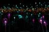Field of Light (kimbenson45) Tags: nationaltrust waddesdonmanor brucemunro fieldoflight art blue brown coiled coils colorful colors colourful colours dusk evening fiber fibreoptic globes glowing green installation light lights lilac opticalfibre optics orange pink purple spheres twilight