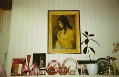 kitchen clutter (KathrynYoung3) Tags: clutter home kitchen paintedlady avocadoplant vintage