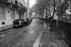 Paris con aguacero #1 (Manuel Gayoso) Tags: isladesanluis paris francia lluvia sena adoquines paraguas