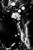 EA80 (Christian Kock) Tags: pisse ea80 die börse wuppertal live show punk concert konzert