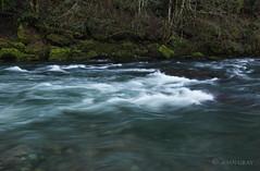 Oregon's Little No. Santiam River (Joan Gray) Tags: northfork
